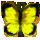 butterflyly