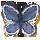 butterflysa
