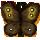 butterflywn