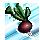 herbs/radish
