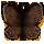 mothdd